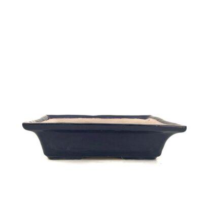 Maceta kokekusa azul