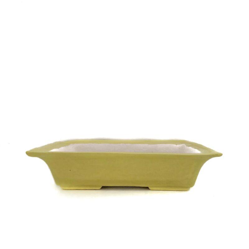 Maceta de bonsái amarilla